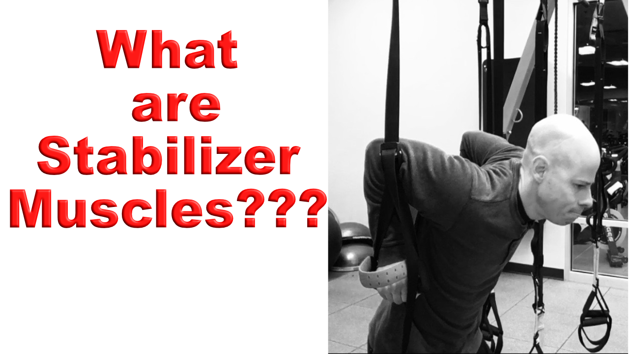 what are stabilizer muscles