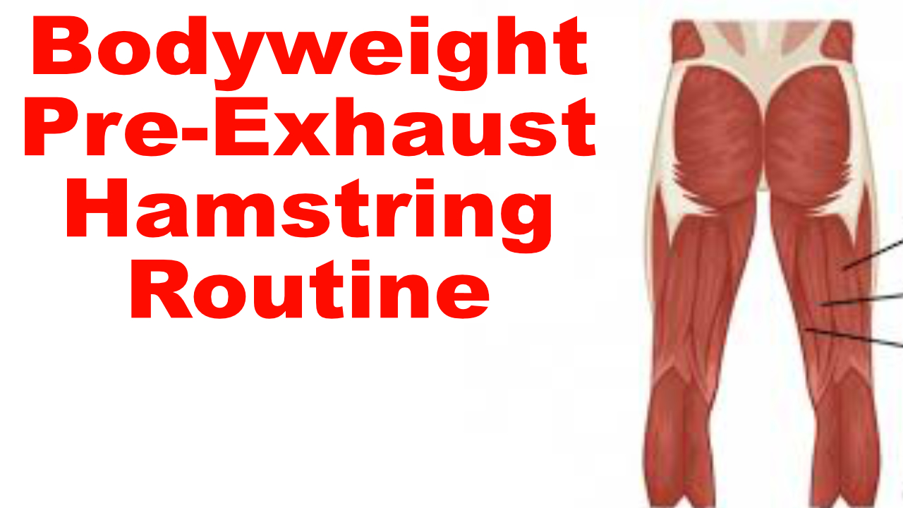 bodyweight hamstring workout
