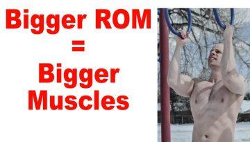 build bigger muscle