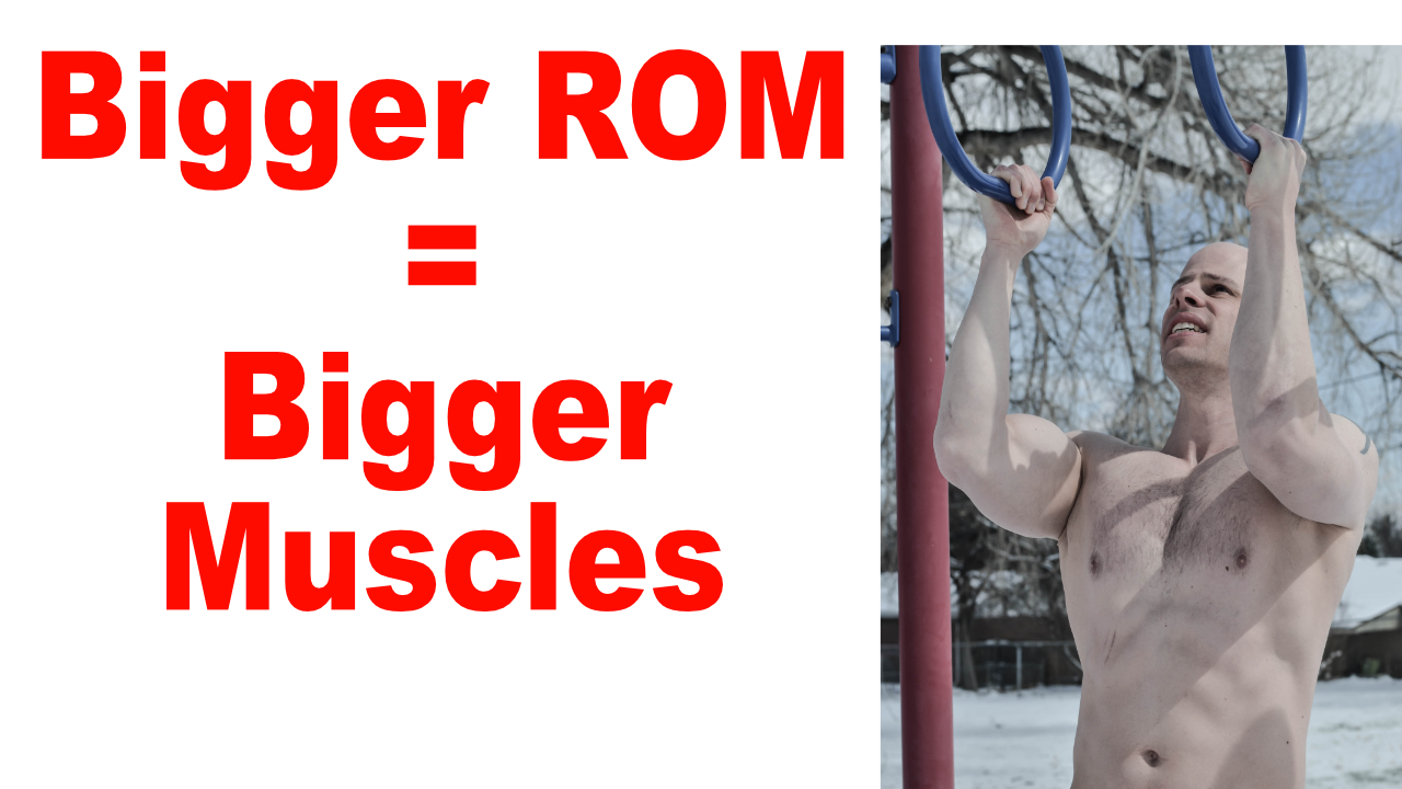 build bigger muscle