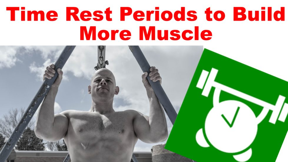 timing to build muscle