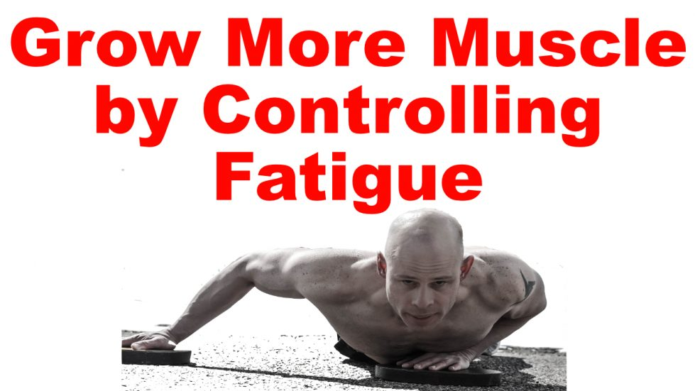 muscle growth fatigue