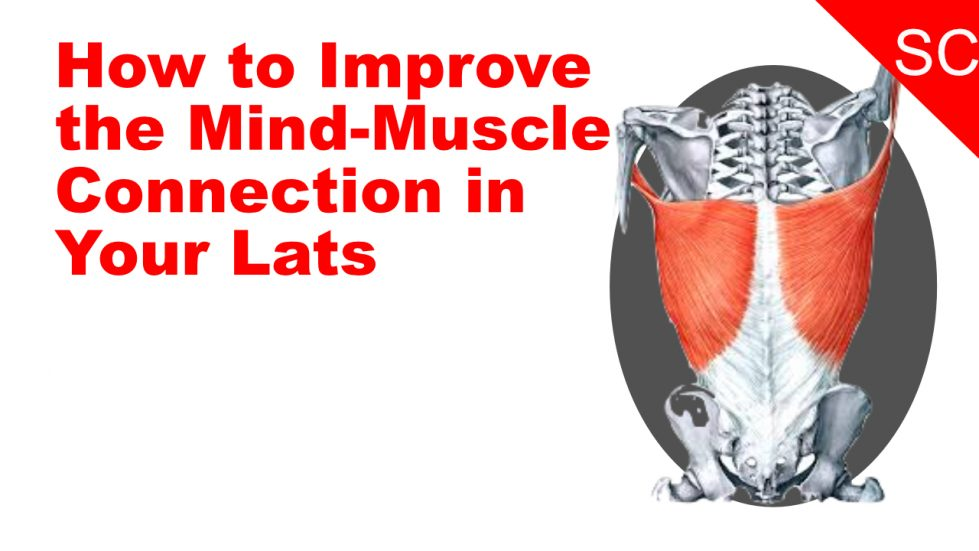 mind muscle connection lats