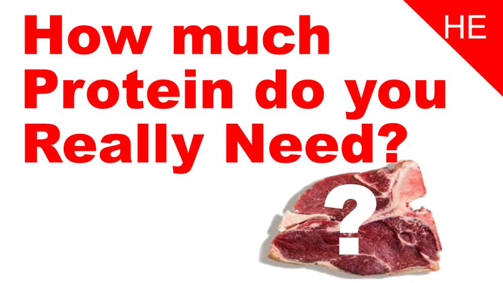how much protein do you really need