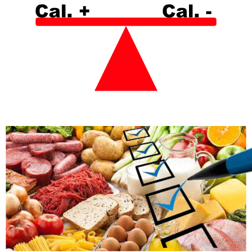 calorie balance vs counting