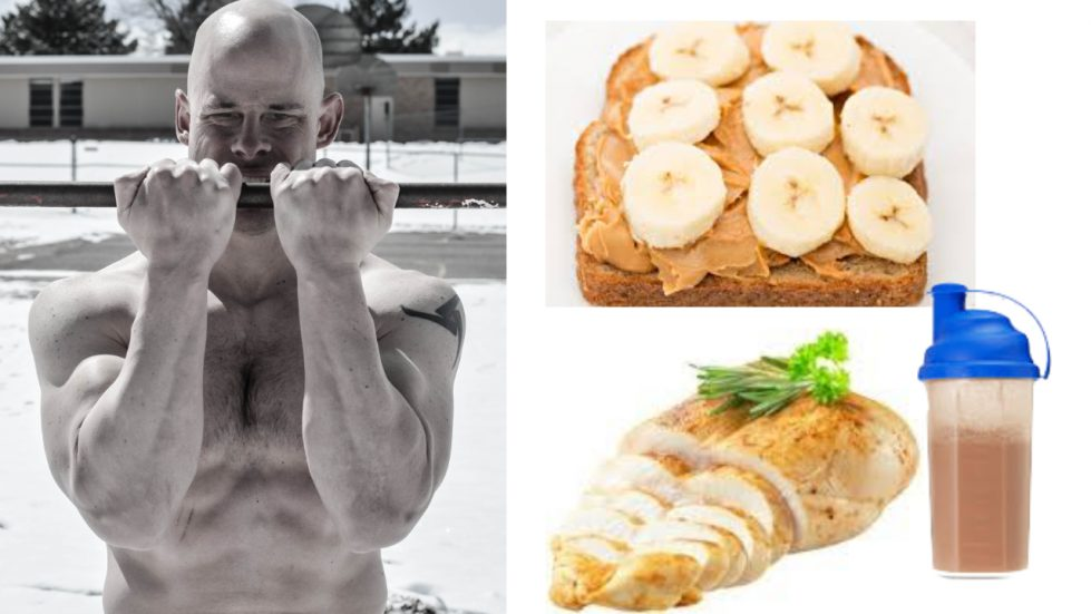 eat after a workout