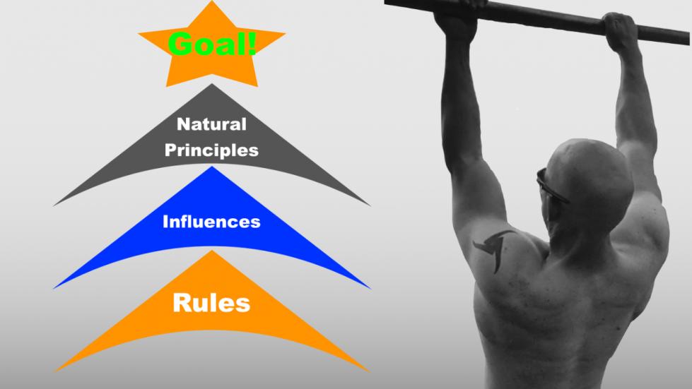 fitness alignment